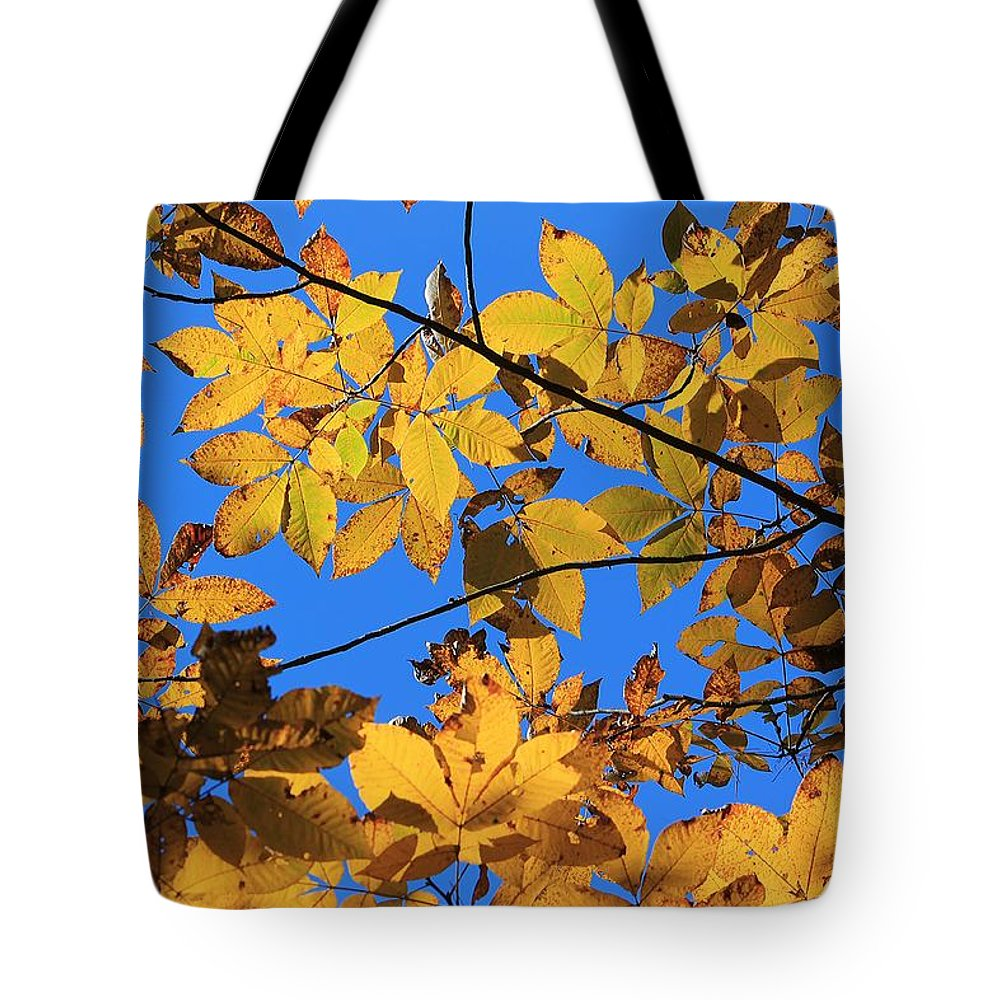 Yellow Leaves Tote Bag featuring the photograph Looking Up To Yellow Leaves by Michael Saunders