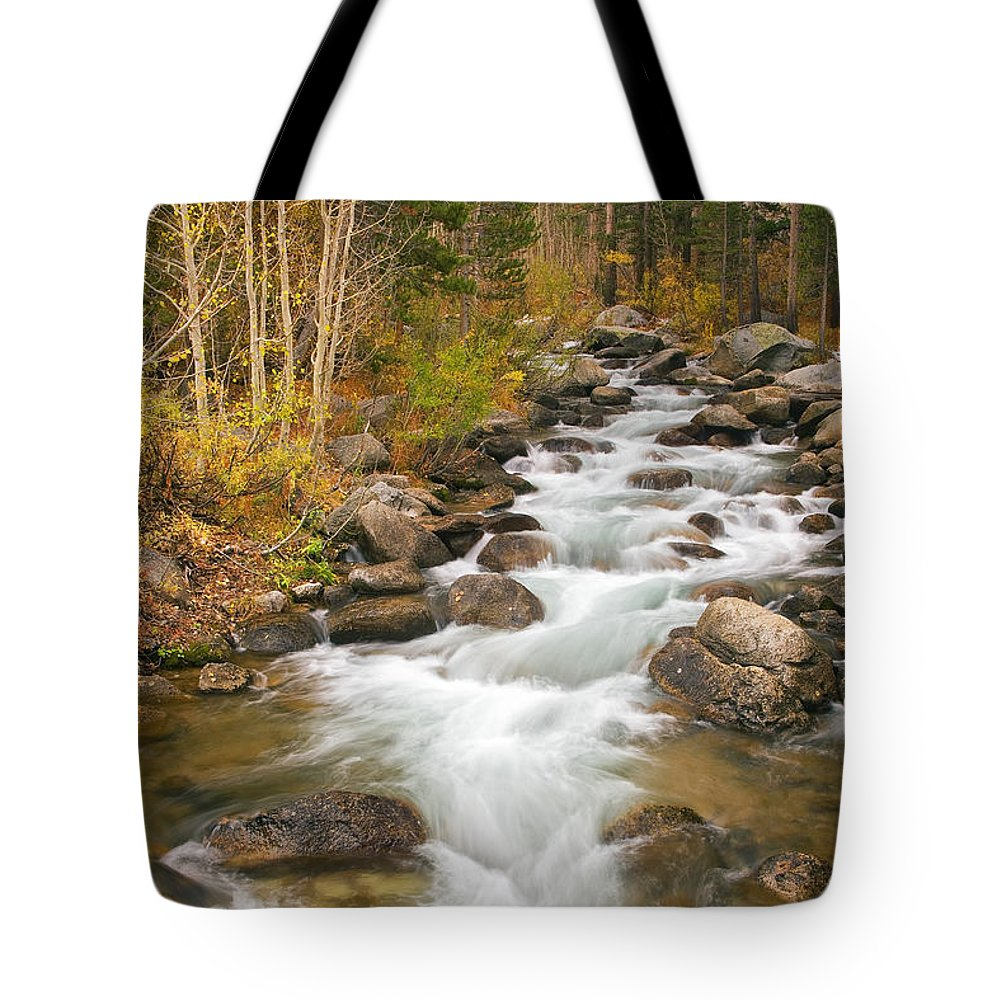 Stream Tote Bag featuring the photograph Looking Upstream by Alice Cahill