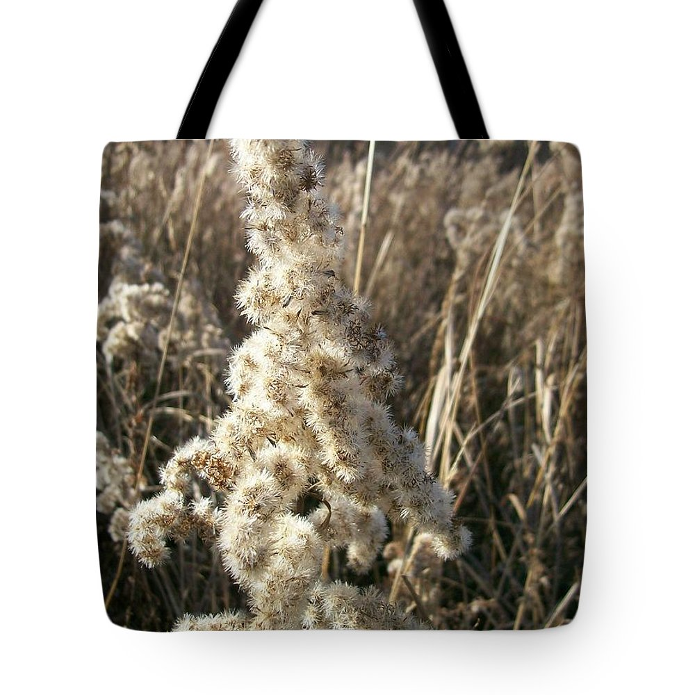 Weed Tote Bag featuring the photograph Looks Like Cotton by Sara Raber