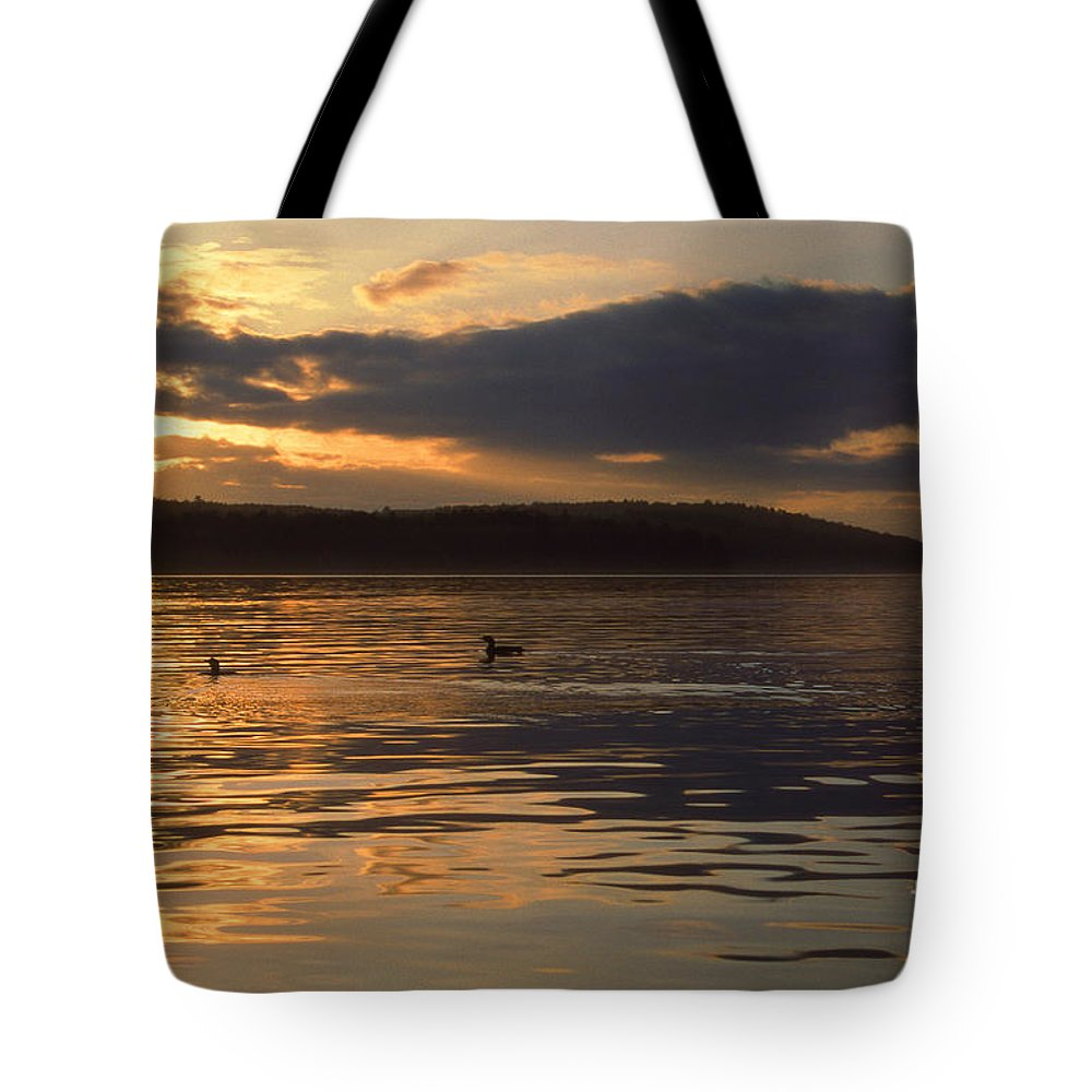 Scenic Tours Tote Bag featuring the photograph Loon Lake by Skip Willits