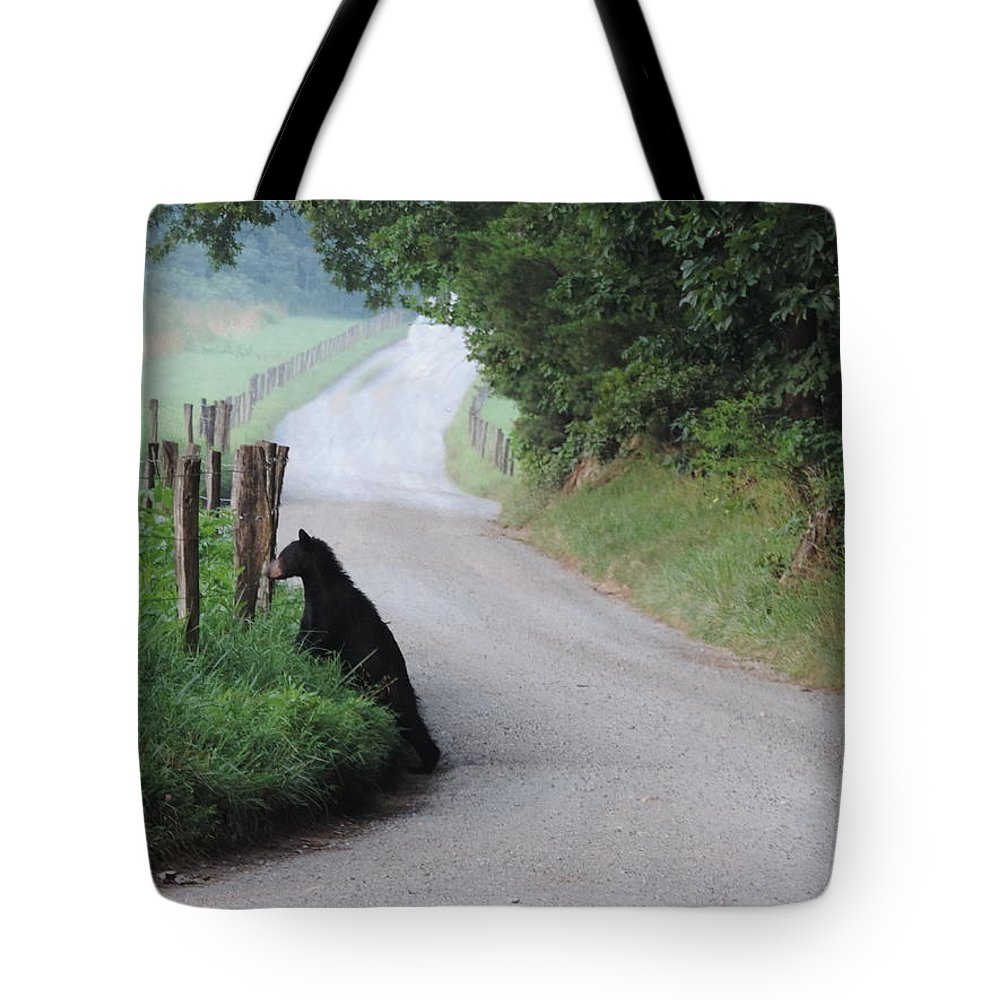 Bear Cub Tote Bag featuring the photograph Lost Bear Cub In Cades Cove by Roe Rader