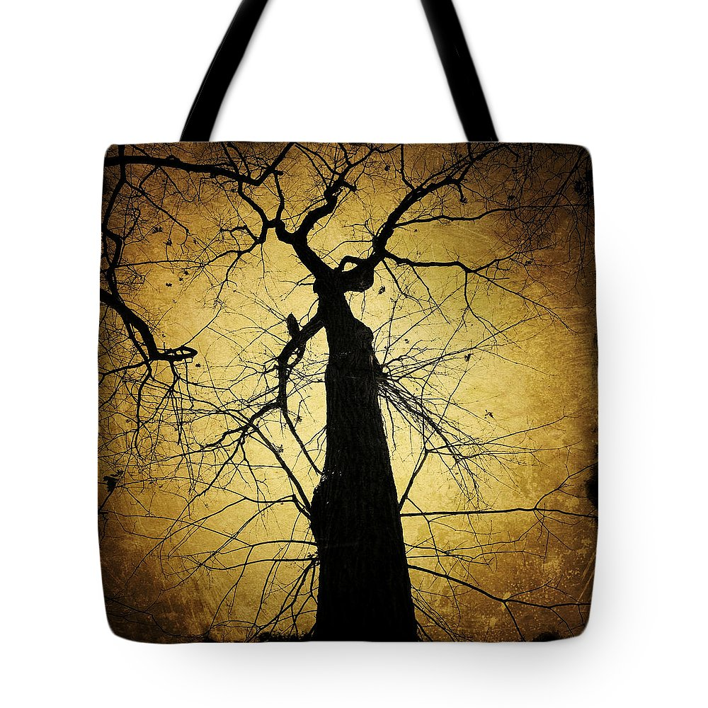 Tree Tote Bag featuring the photograph Lost In The Forest I Broke Off A Dark Twig And Lifted Its Whisper To My Thirsty Lips by Natasha Marco