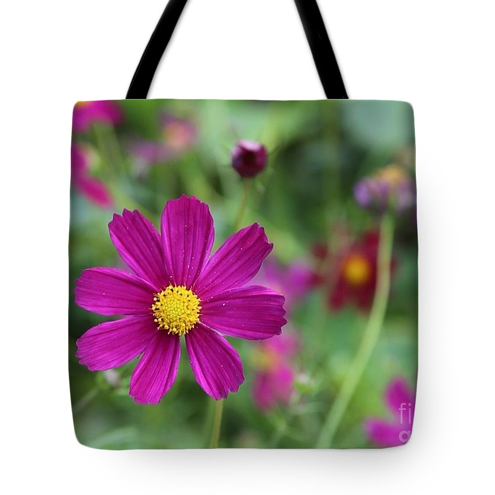 Cosmos Tote Bag featuring the photograph Lost In The Garden by Carol Groenen