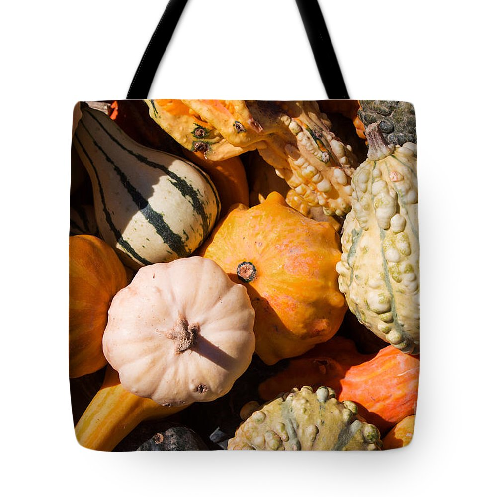 Gourd Tote Bag featuring the photograph Lots Of Little Gourds by Barbara McMahon
