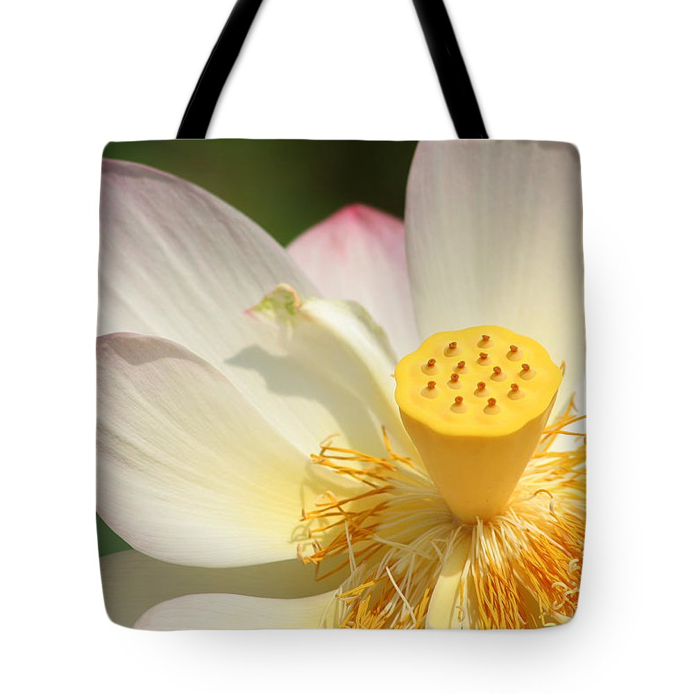 Lotus Tote Bag featuring the photograph Lotus Blossom by Bob and Jan Shriner