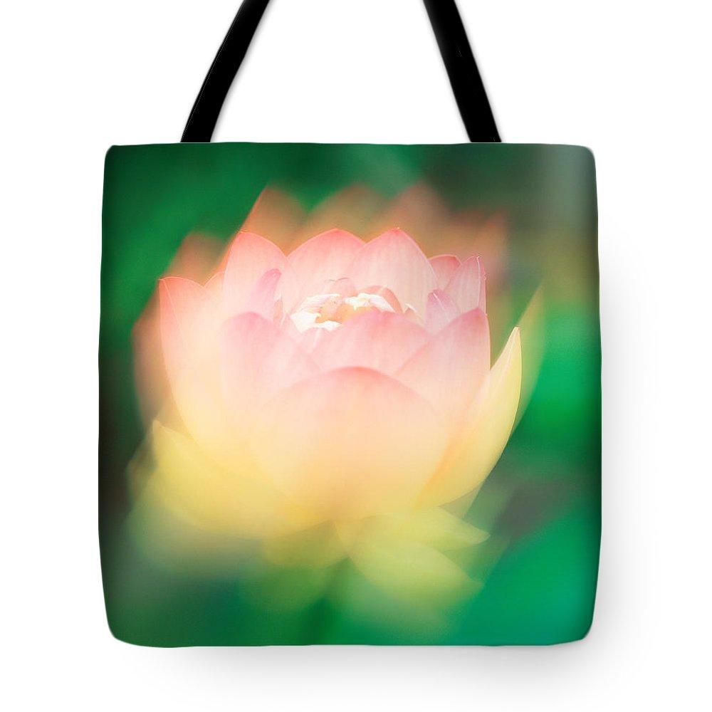 Designs Similar to Lotus, Blurred Motion