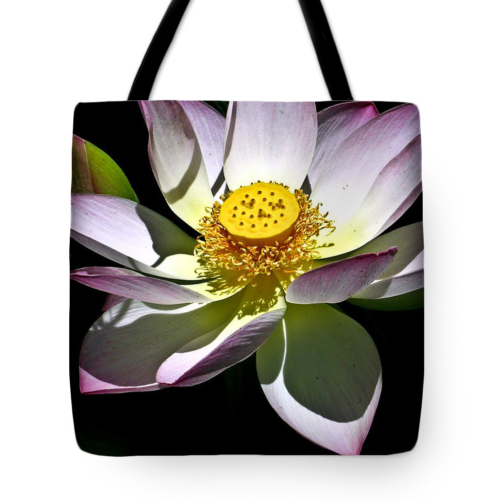 Lotus Tote Bag featuring the photograph Lotus Of The Night by Douglas Barnett