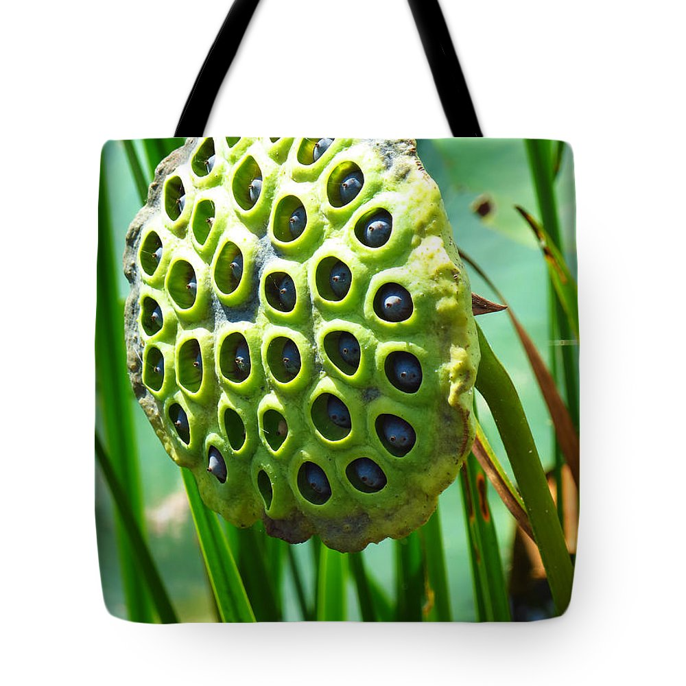Lotus Pod Tote Bag featuring the photograph Lotus Pod by Shawna Rowe