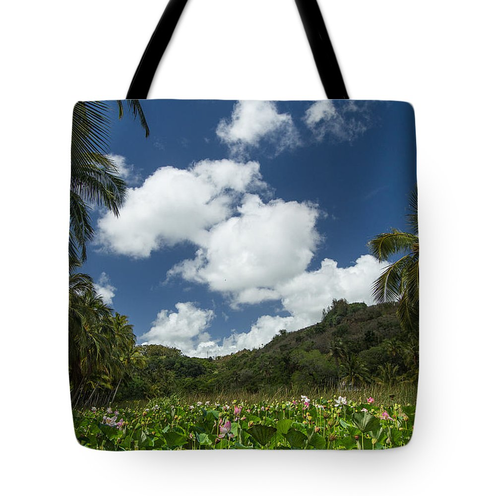 Lotus Flowers. Botanical Garden Tote Bag featuring the photograph Lotus Pond by Roger Mullenhour