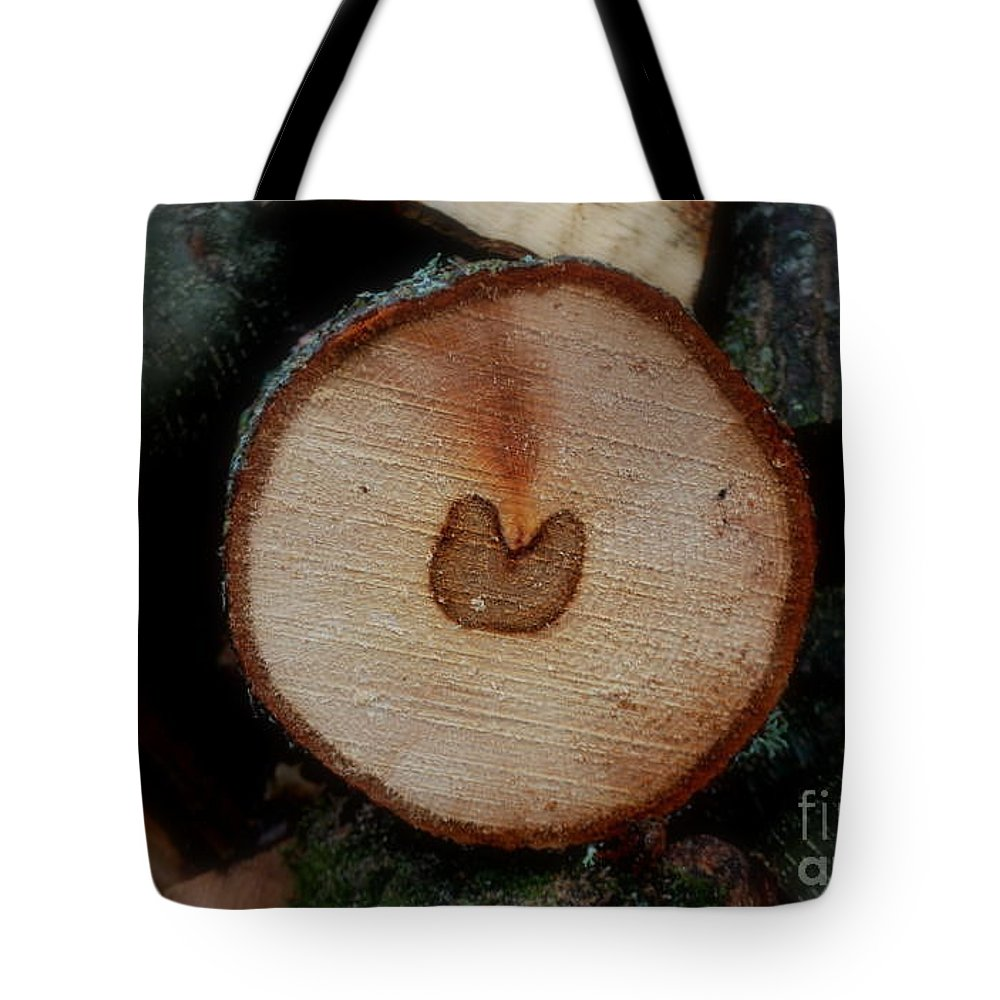 Passing By Tote Bag featuring the photograph Love Is Everywhere by Marija Djedovic