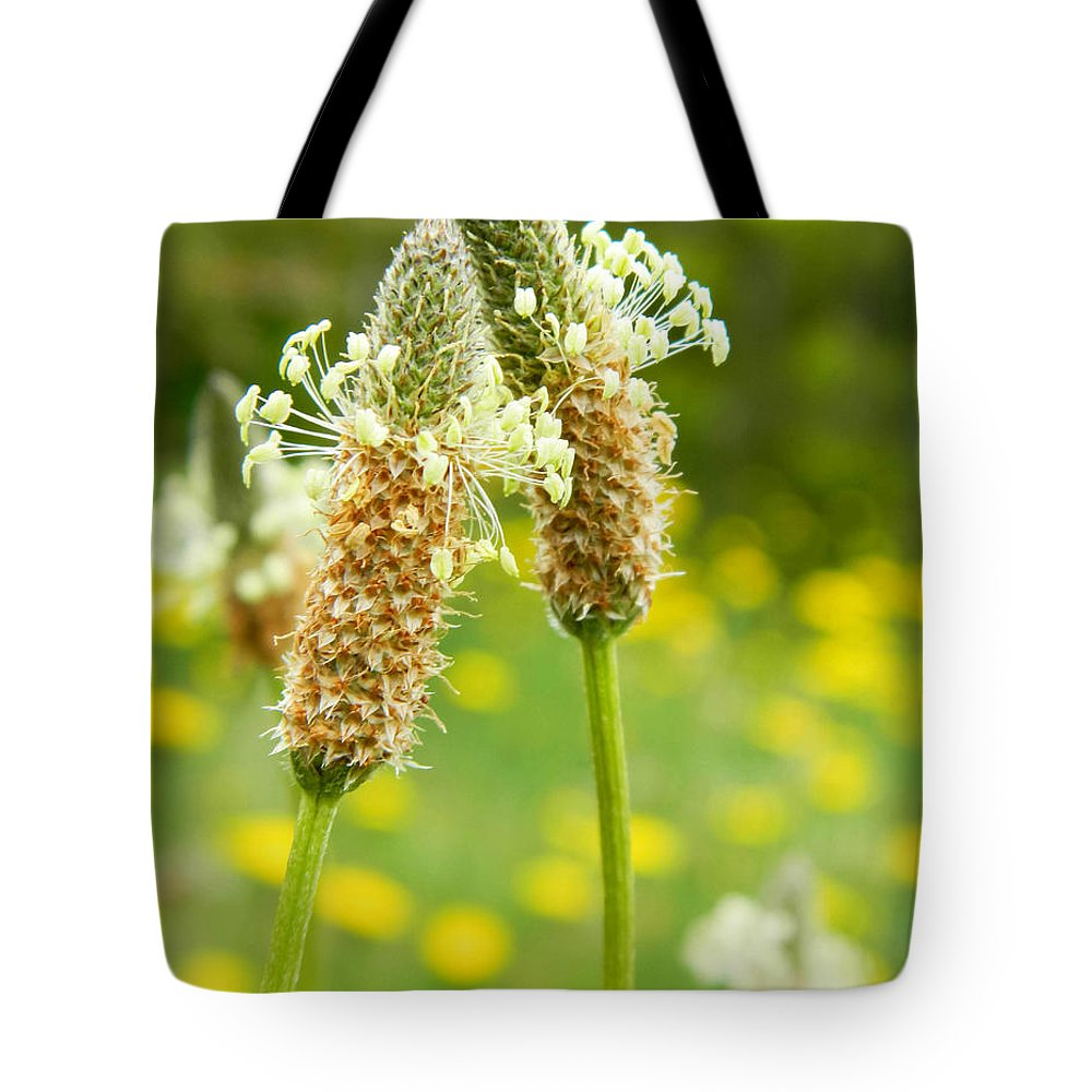 Field Tote Bag featuring the photograph Love Is In The Air by Andrea Anderegg