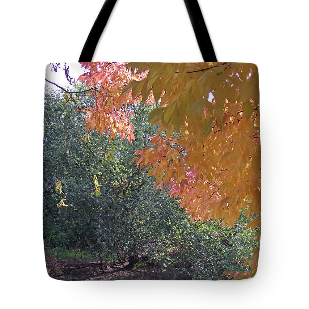 Lovely Tote Bag featuring the photograph Lovely Autumn Colors by Mike and Sharon Mathews