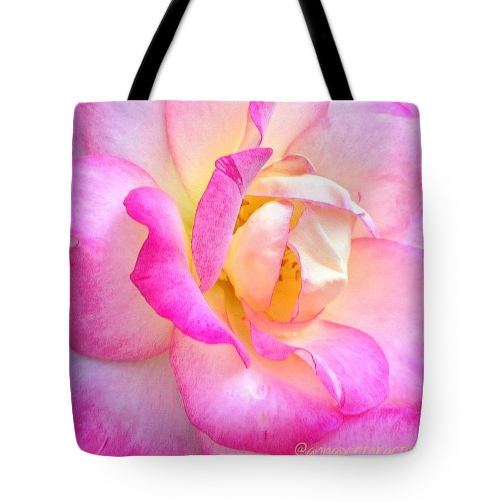 Lovely Lady Diana Rose Tote Bag featuring the photograph Lovely Lady Diana Rose by Anna Porter