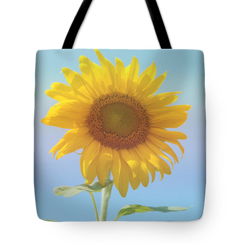 Sunflower Tote Bag featuring the photograph Loving The Sun by Ann Horn