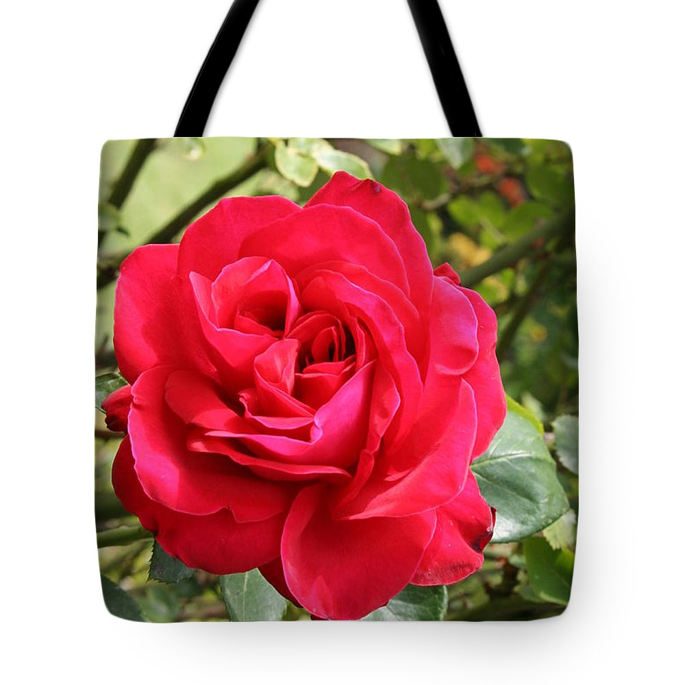 Rose Tote Bag featuring the photograph Lovely Red Rose by Christiane Schulze Art And Photography