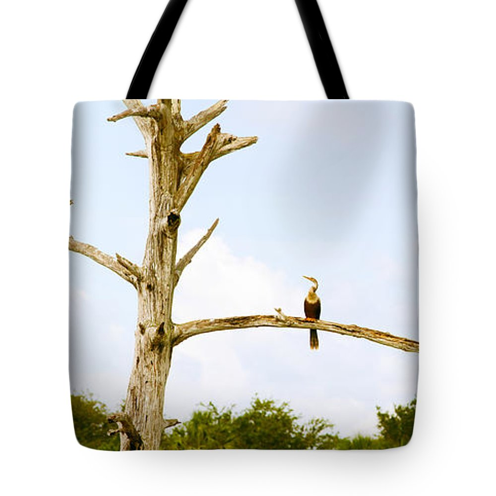 Photography Tote Bag featuring the photograph Low Angle View Of Cormorants by Panoramic Images
