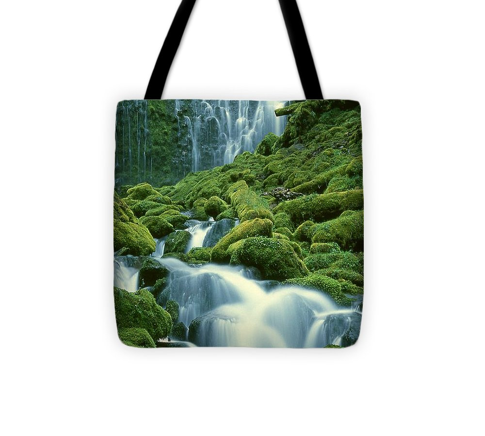 Waterfall Tote Bag featuring the photograph Lower Proxy Falls by Terry Dorvinen