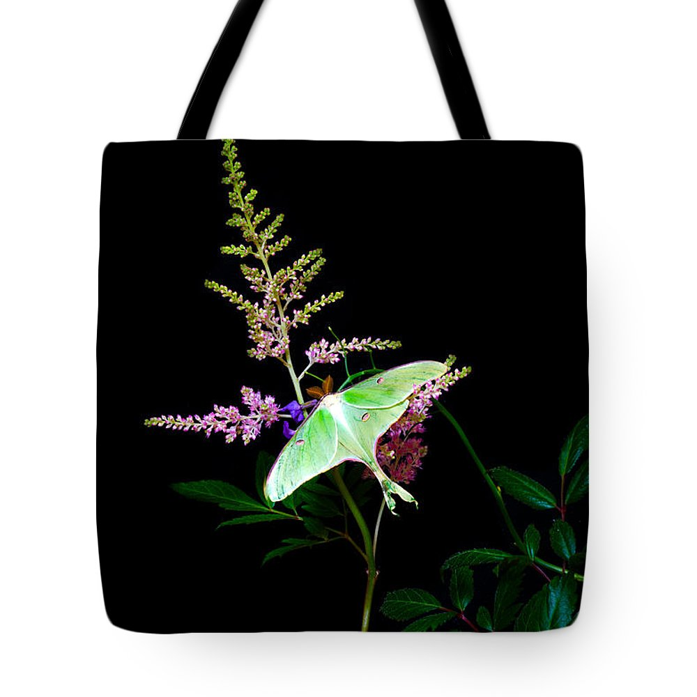 Luna Moth Astilby Flower: Tote Bag featuring the photograph Luna Moth Astilby Flower by Randall Branham