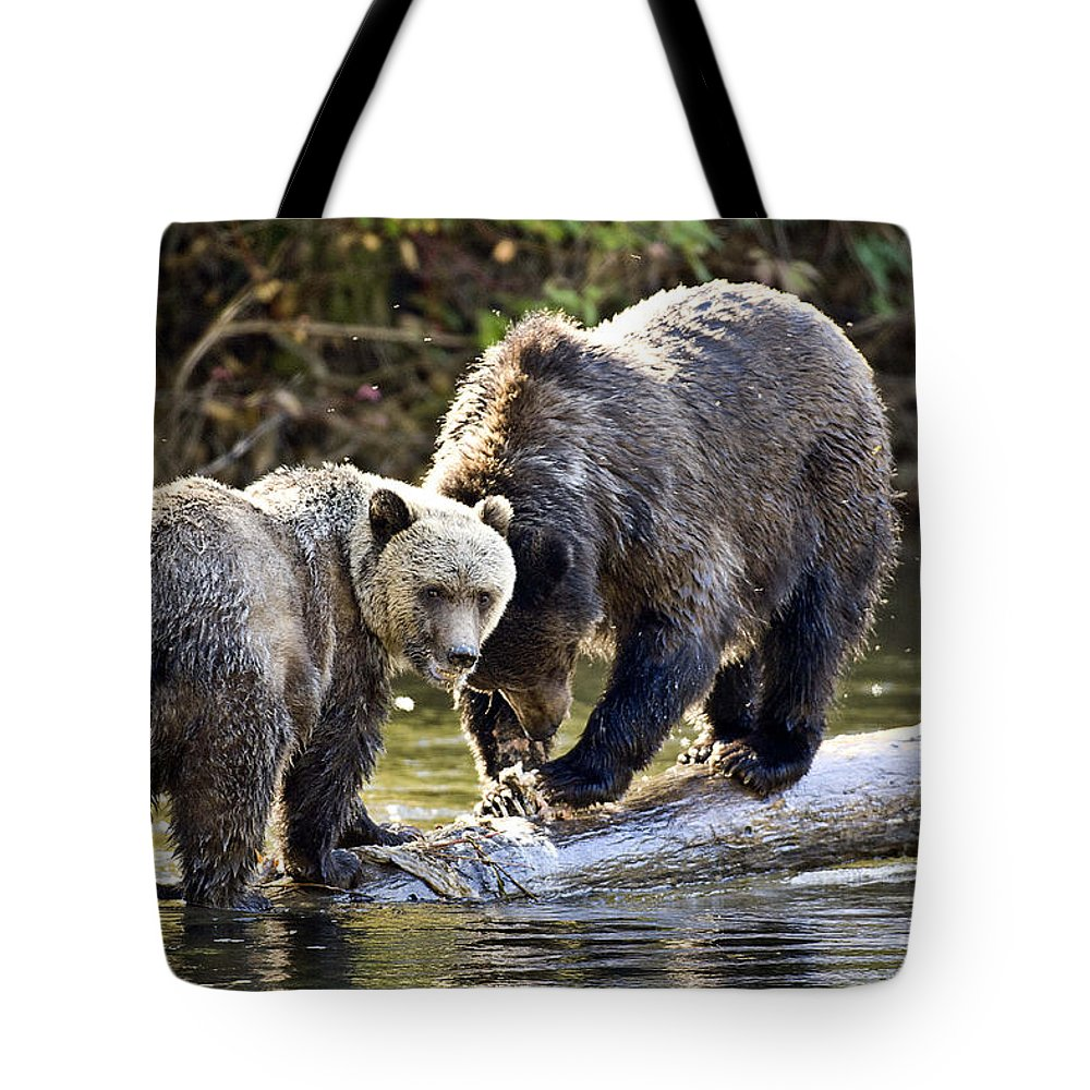 Animals # Tote Bag featuring the photograph Lunch Time by Randy Giesbrecht