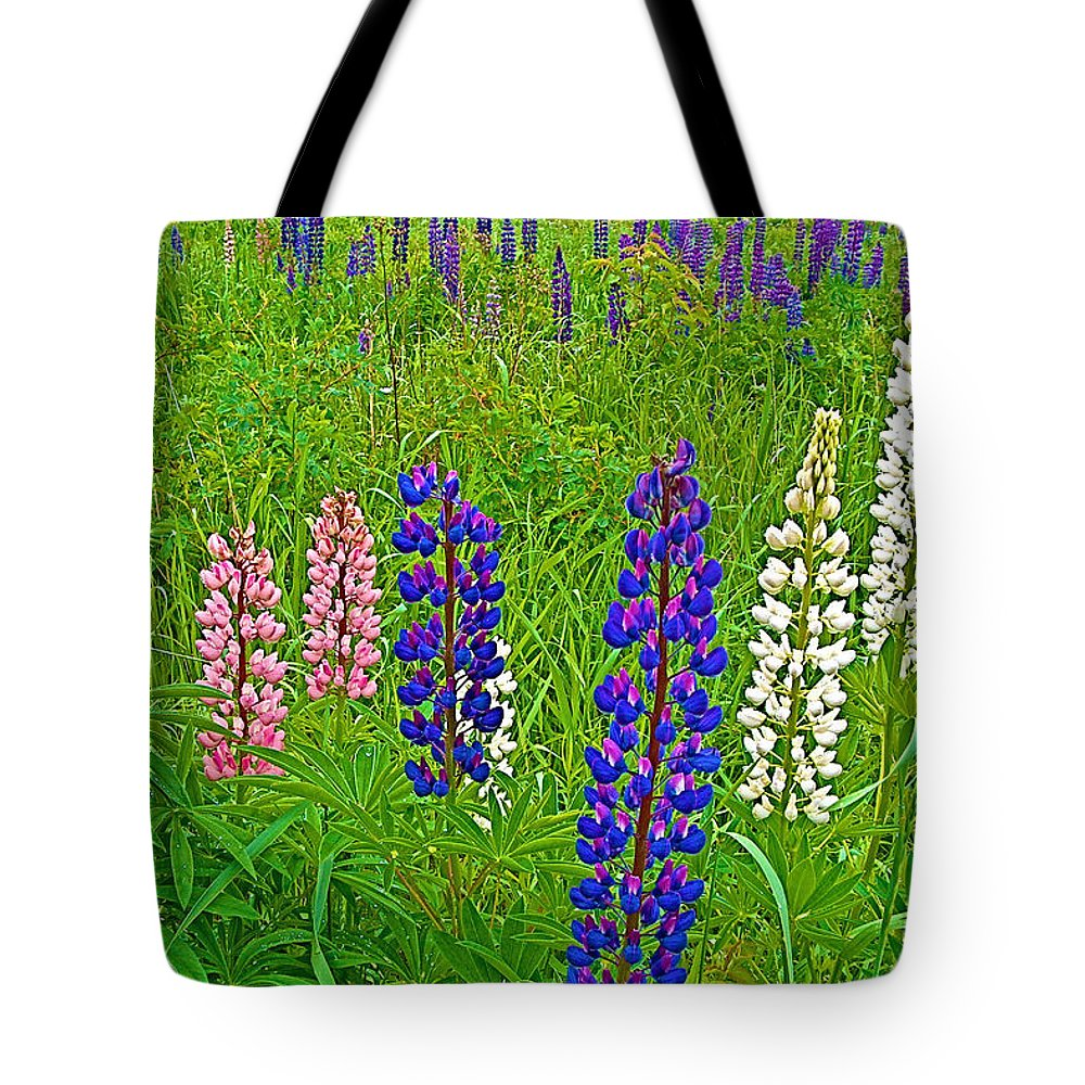 Lupine On Campobello Island Tote Bag featuring the photograph Lupine On Campobello Island-nb by Ruth Hager
