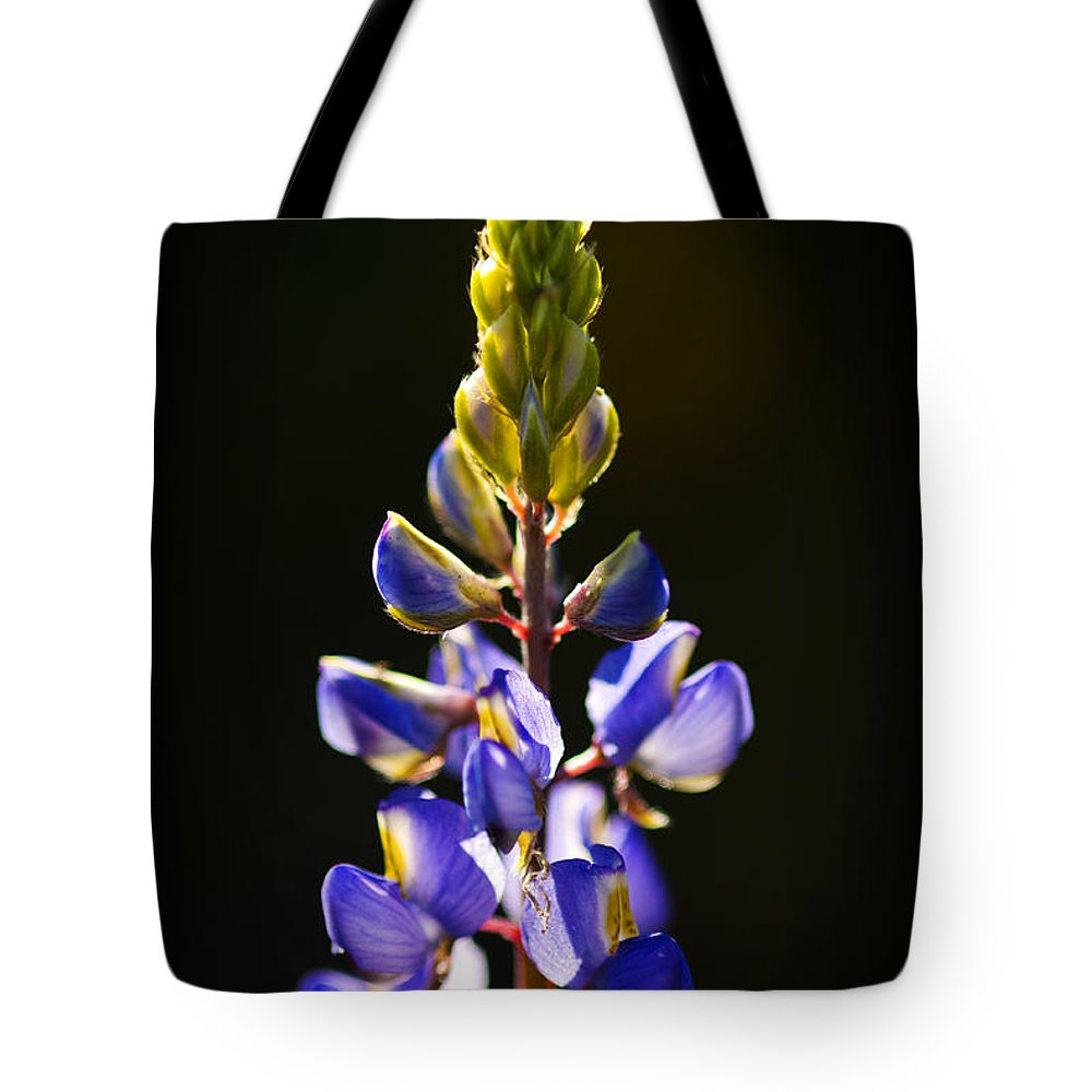 Blue Lupine Tote Bag featuring the photograph Lupine by Saija Lehtonen
