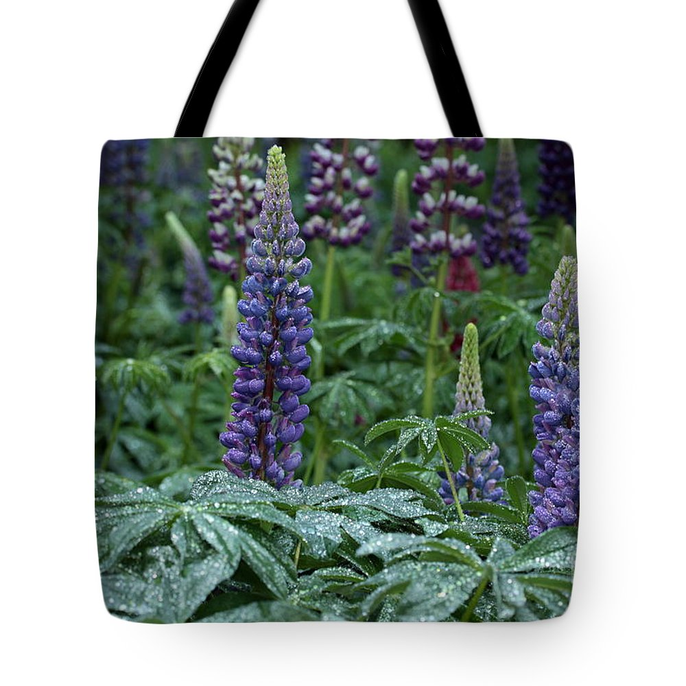 Lupine Tote Bag featuring the photograph Lupines In The Rain by Kenny Glotfelty
