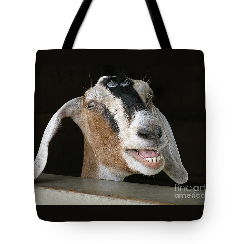 Goat Tote Bag featuring the photograph Maa-aaa by Ann Horn