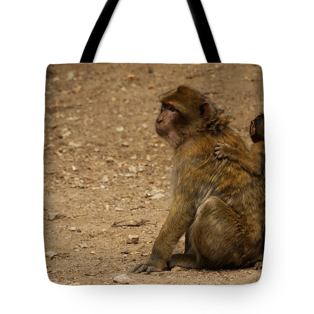 Animal Tote Bag featuring the photograph Macaque Monkeys by Ivan Slosar