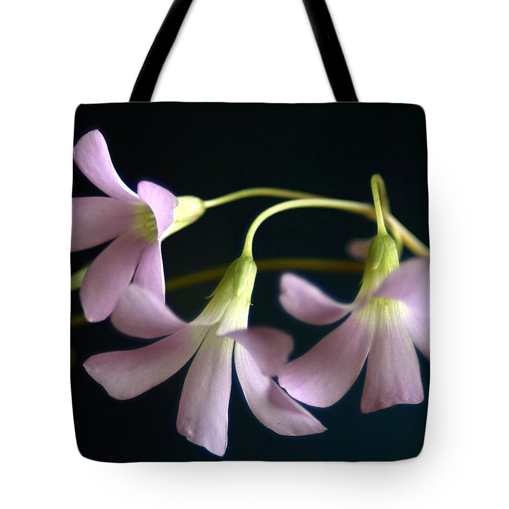 Leaf Tote Bag featuring the photograph Macro Clover by Greg Allore