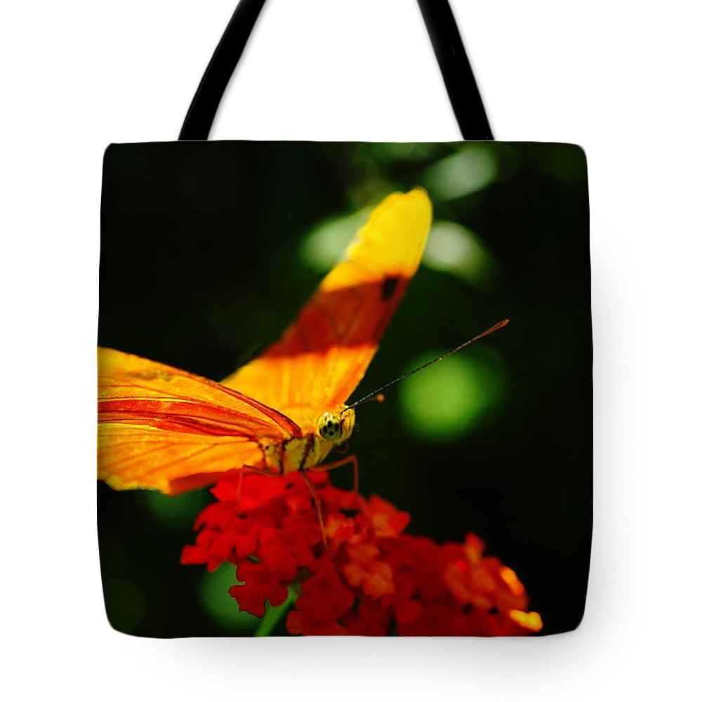 Orange Tote Bag featuring the photograph Macro Of An Orange Butterfly by Jeff Swan