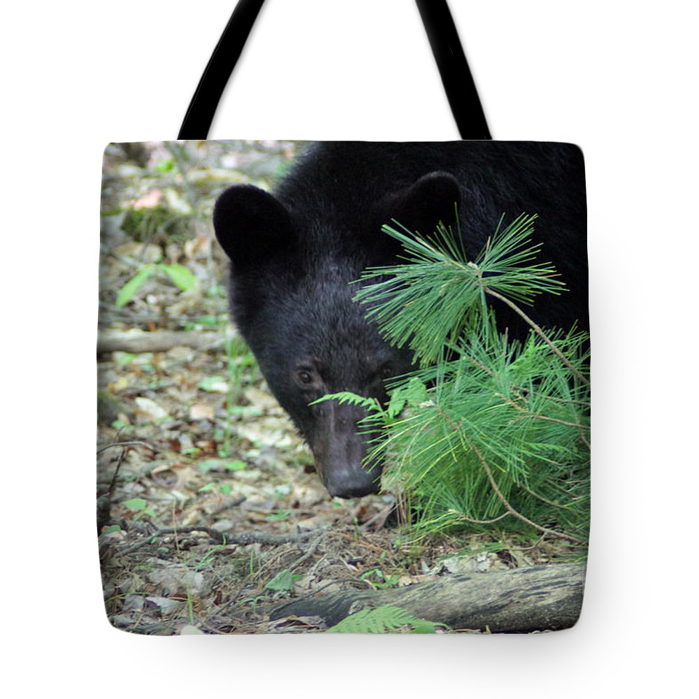 Bear Tote Bag featuring the photograph Mad Bear by Dwight Cook