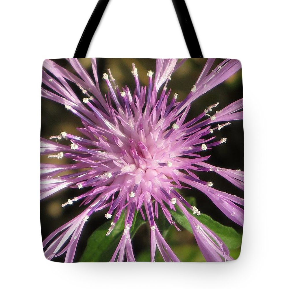 Posters Tote Bag featuring the photograph Magenta Fireworks by Sonali Gangane