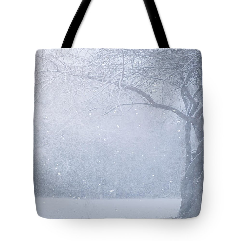 Snow Tote Bag featuring the photograph Magic Of The Season by Carrie Ann Grippo-Pike