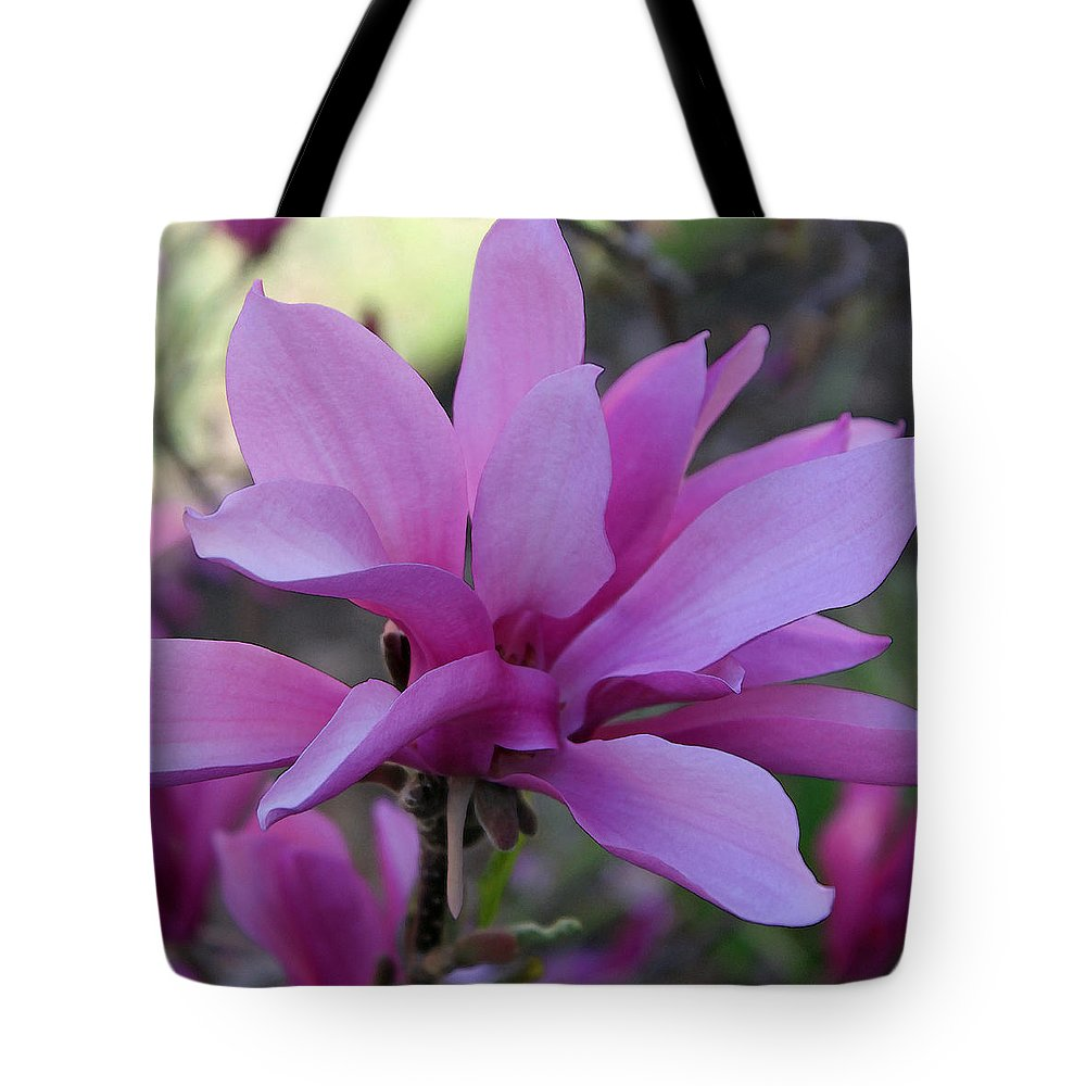 Saucer Magnolia Tote Bag featuring the photograph Magnificence by Suzanne Gaff