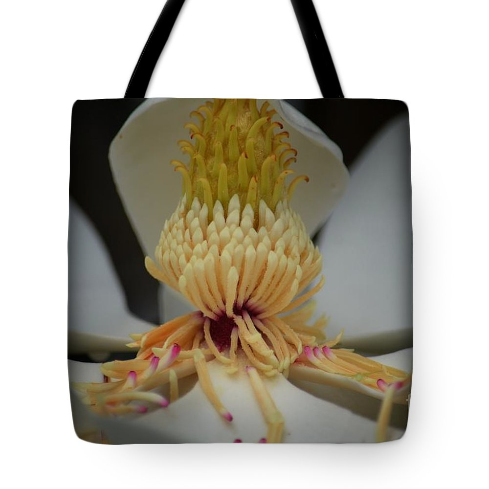 Magnolia 14-4 Tote Bag featuring the photograph Magnolia 14-4 by Maria Urso