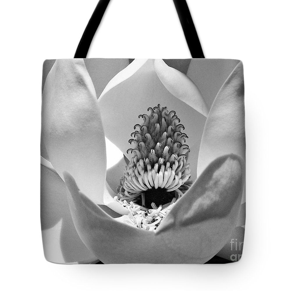 Landscape Tote Bag featuring the photograph Magnolia Bloom 3bw by Earl Johnson