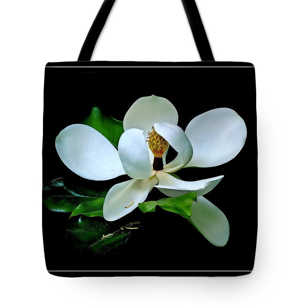 Magnolia Tote Bag featuring the photograph Magnolia by Carolyn Derstine