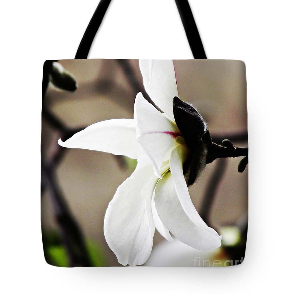 Magnolia Tote Bag featuring the photograph Magnolia In Profile by Sarah Loft