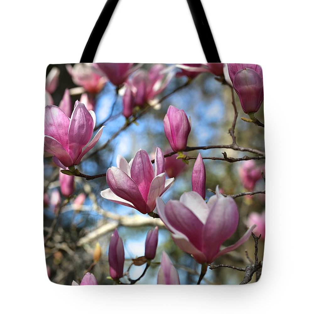 Saucer Magnolia Tote Bag featuring the photograph Magnolia Perspective by Carol Groenen