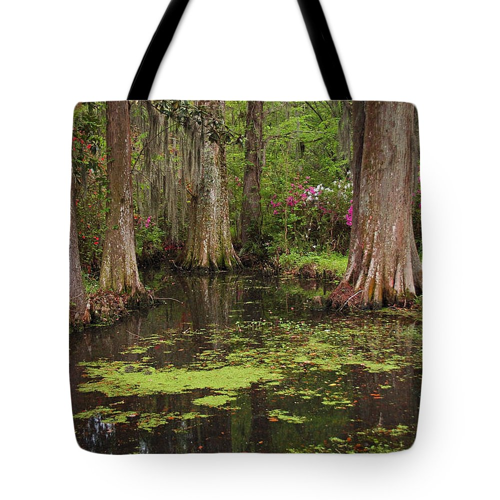 Magnolia Plantation Gardens Tote Bag featuring the photograph Magnolia Plantation Gardens Spring Series I by Suzanne Gaff