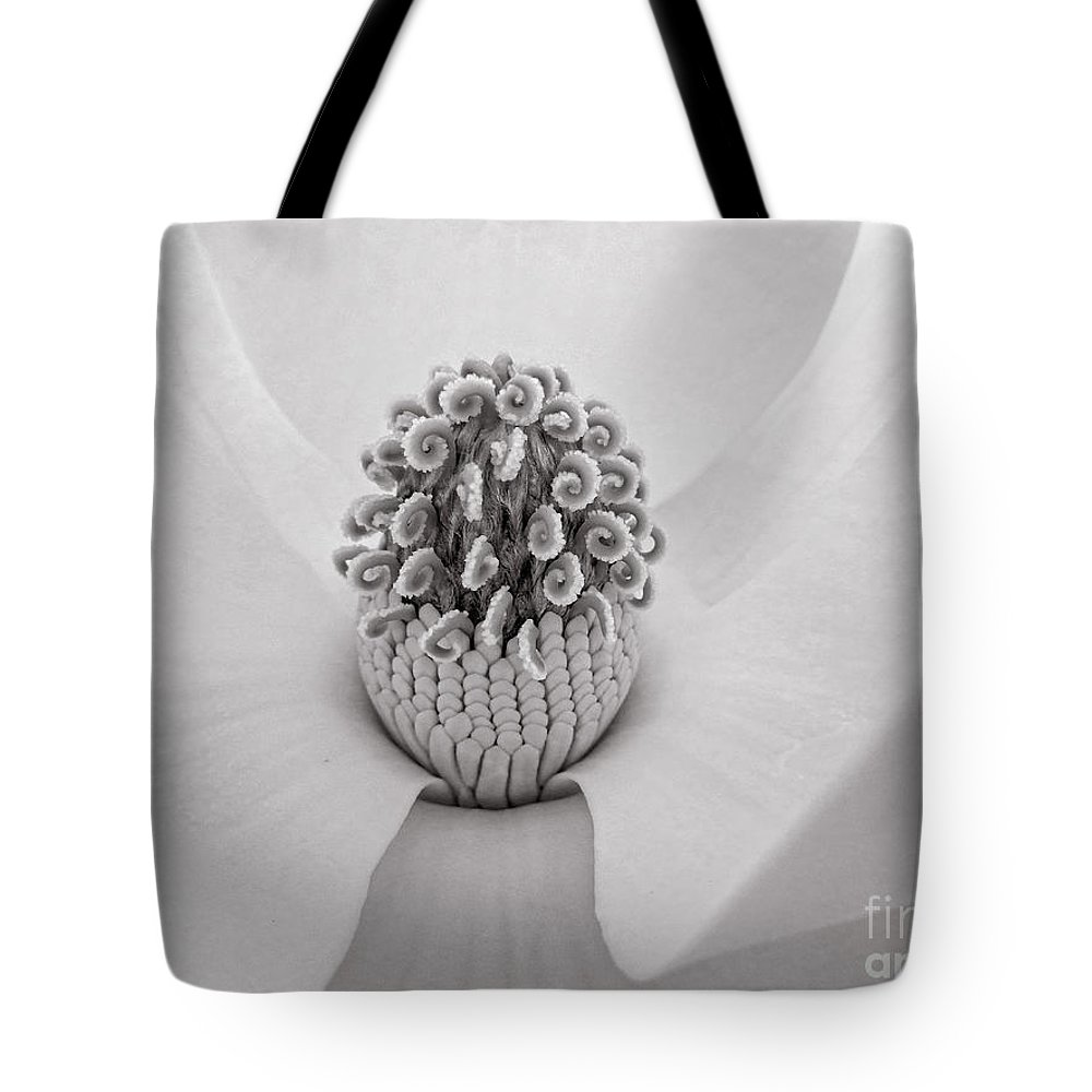 North Carolina Tote Bag featuring the photograph Magnolia Veil by Kelley Freel-Ebner