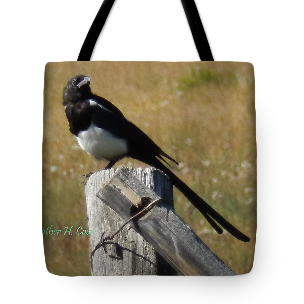 Magpie Tote Bag featuring the photograph Magpie by Heather Coen
