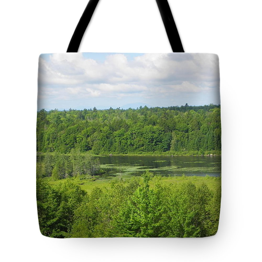 Wilderness Tote Bag featuring the photograph Mainely Green by Georgia Hamlin