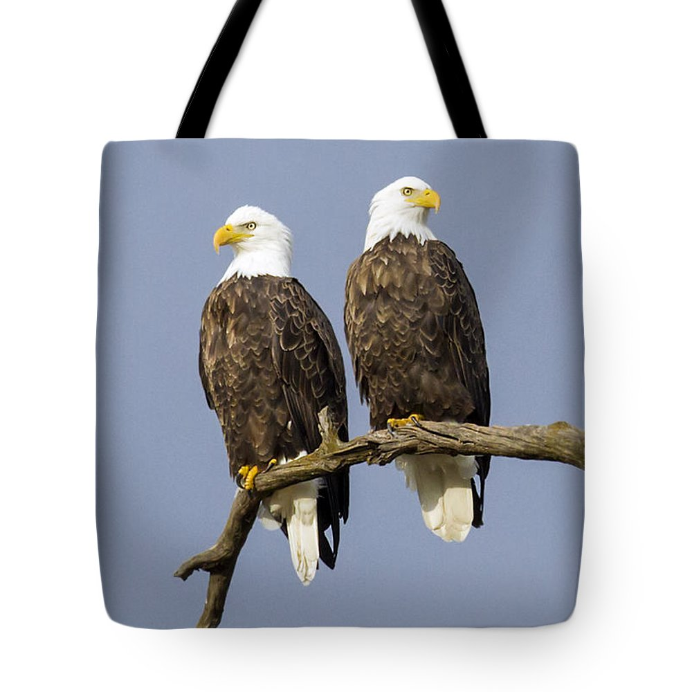 Eagle Tote Bag featuring the photograph Majestic Beauty 6 by David Lester
