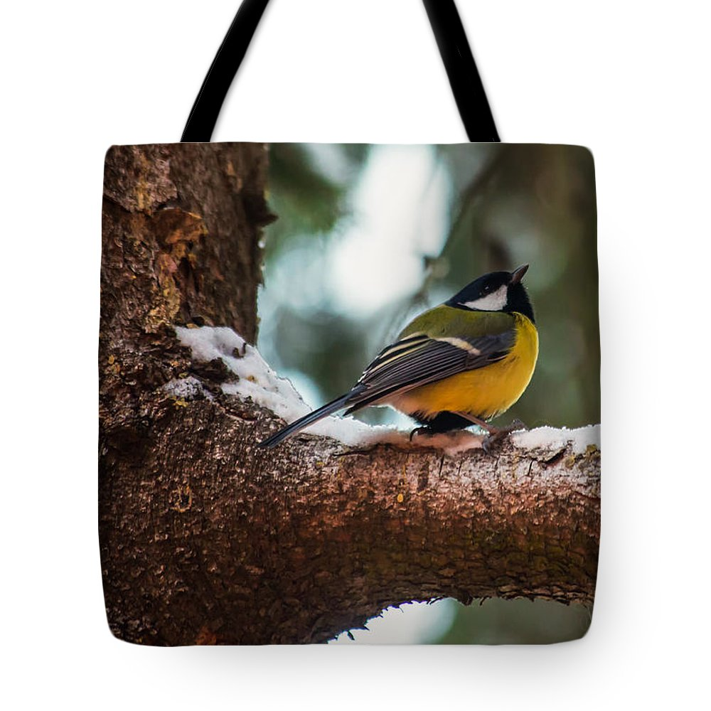 Great Tit Tote Bag featuring the photograph Male Great Tit by Eti Reid