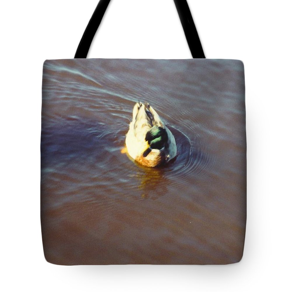 Drifting Alone Tote Bag featuring the photograph Male Mallard Duck by Robert Floyd