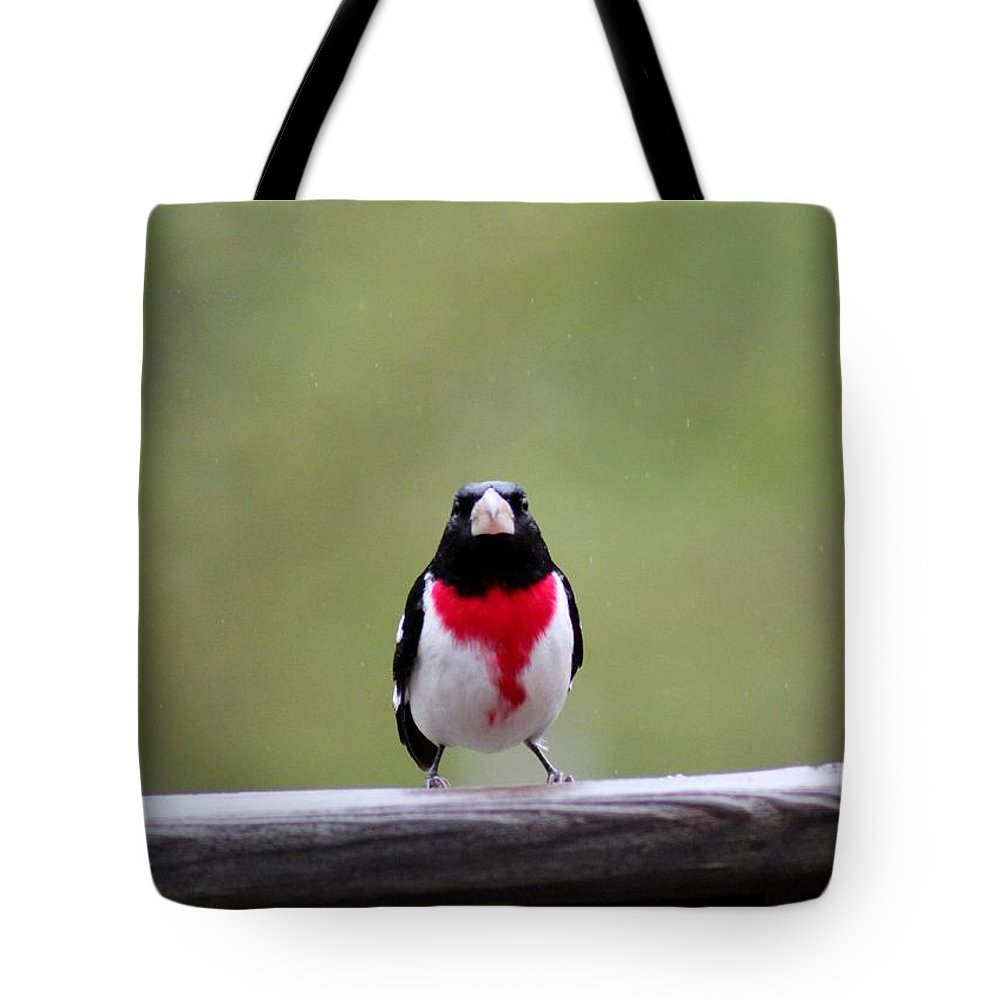 Male Rose-breasted Grosbeak Tote Bag featuring the photograph Male Rose-breasted Grosbeak by Stephanie Kripa