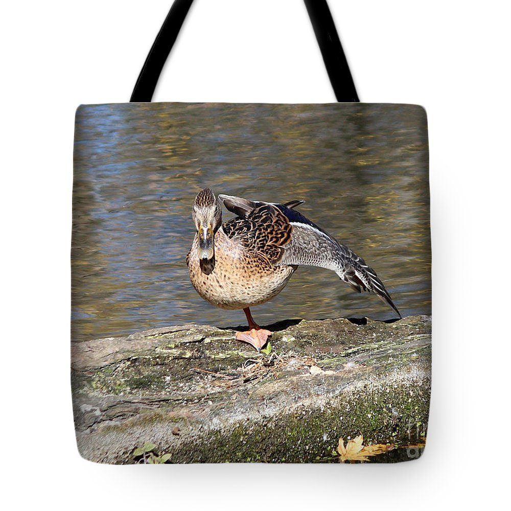 Mallards Tote Bag featuring the photograph Mallard Duck Stretch by Lori Tordsen