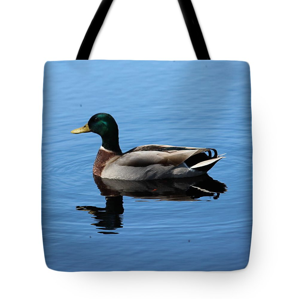 Mallard Tote Bag featuring the photograph Mallard Duck With Reflection On The Water by Kathy LaBerge