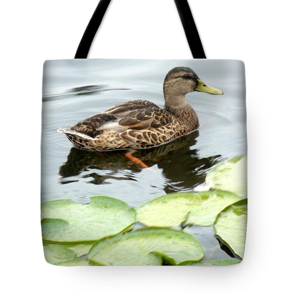 Mallard Tote Bag featuring the photograph Mallard Lilly Pad by Nicki Bennett